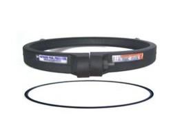 Hayward-DEX2421JKIT-DE-and-Cartridge-Filter-Clamp-and-Seal-Kit-B004VJSPM6